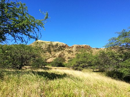 diamond head trail 1m