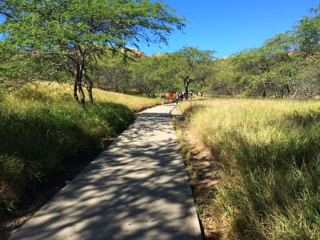 diamond head trail 2m