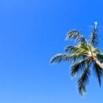 hawaii weather