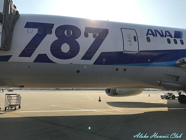 ボーイング787